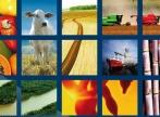 Tulburarea internationala de alimentatie. Dilema omnivorului