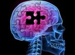 8 strategii care ajuta la prevenirea aparitiei bolii Alzheimer