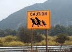 Migratia dinspre Est spre Vest si cautarea unei fericiri iluzorii
