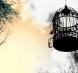 Longevitatea: recuperarea visului devenit povara